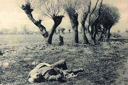 pole śmierci po bitwie