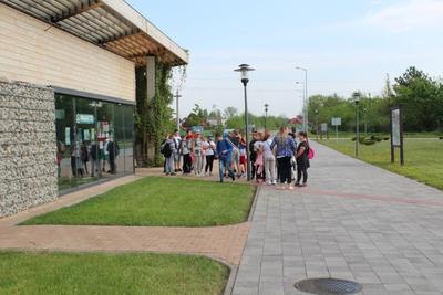 Warsztaty w centrum edukacji przyrodniczej w Janowie Lubelskim.