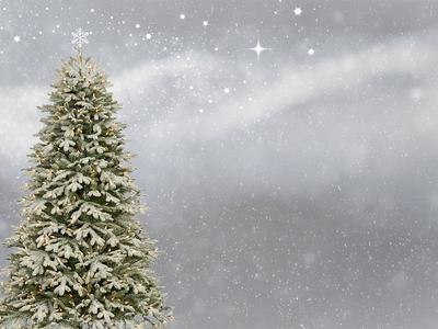 Niech ten wyczekiwany czas odpoczynku związany z feriami świątecznymi i Nowym Rokiem przyniesie wiele