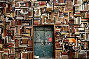 books1655783_960_720jpg [300x200]