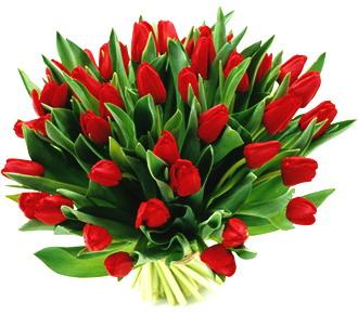 kwiatynadzienkobiet.jpg