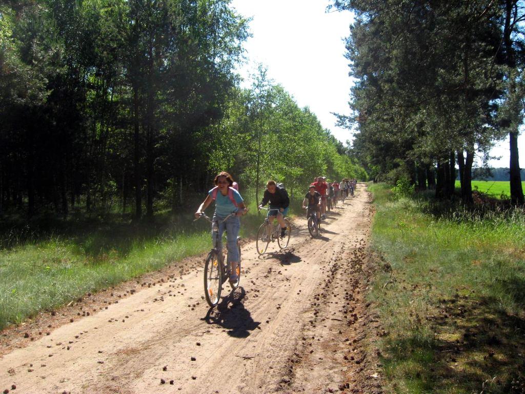 Naszymi rowerami dojedziesz nie tylko nad jezioro!