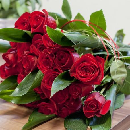 kwiat_roze.jpg