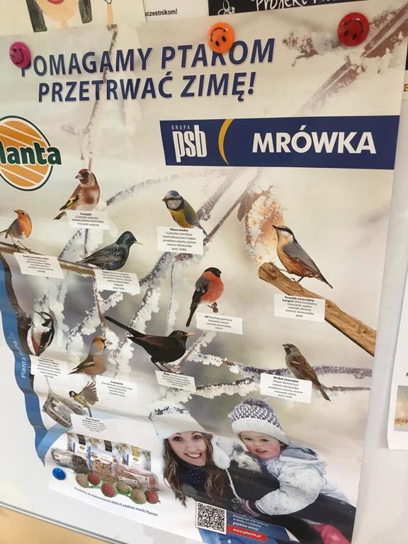 Dbajmy o ptaki