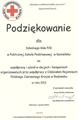 pck2.jpg [300x463]