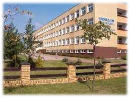 Logo Gimnazjum im. Zjednoczonej Europy     w Koźminie Wielkopolskim